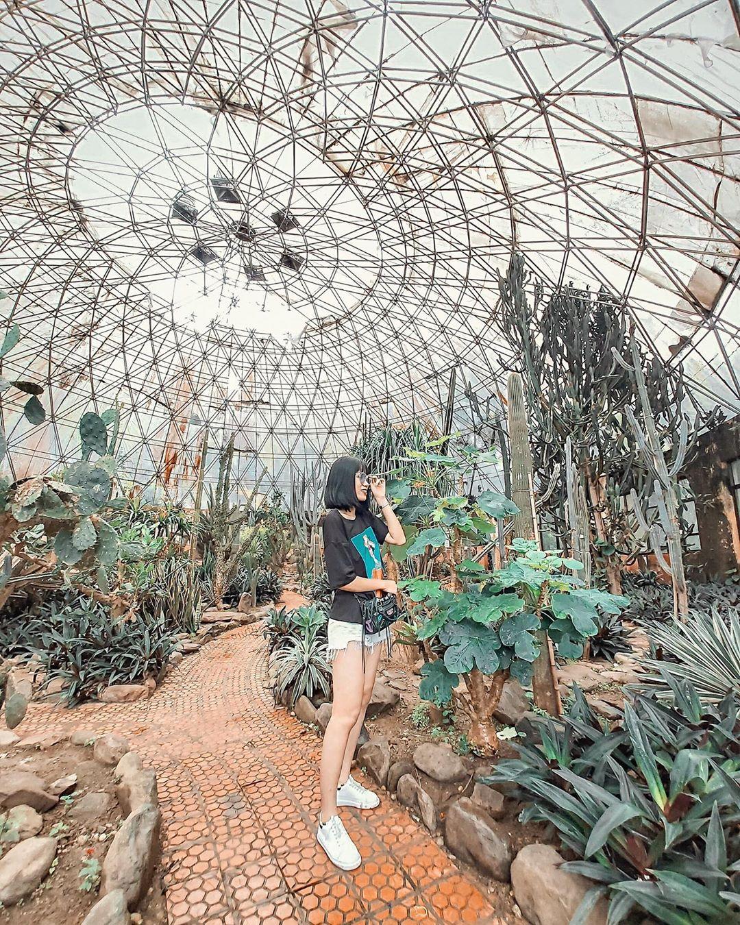 du lịch gần Hà Nội 1
