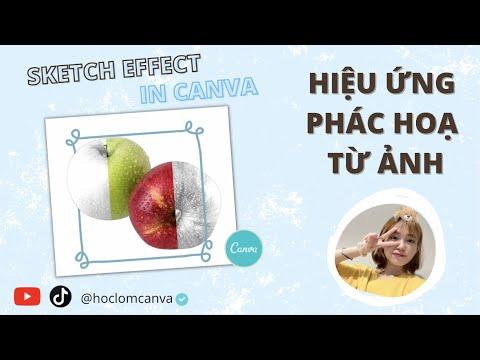 [CANVA TRICKS AND TIPS] HIỆU ỨNG PHÁC HOẠ TỪ ẢNH CHO NGƯỜI NHẬP MÔN CANVA | SKETCH EFFECT IN CANVA