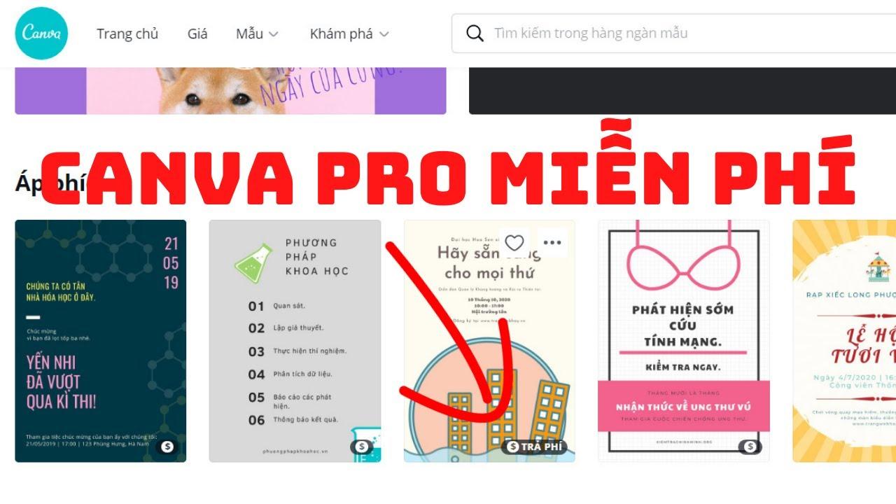 Hướng dẫn đăng ký tài khoản Canva Pro miễn phí | Cách tạo tài khoản thiết kế ảnh chuyên nghiệp